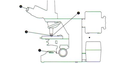 生物显微镜擦拭部位